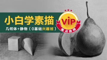 【VIP】《小白学素描》(普及)几何/静物/美术基础/绘画结构色调