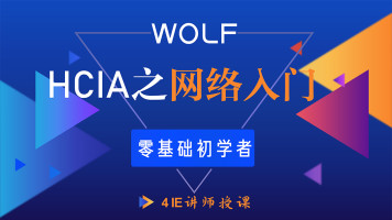5IE讲师,HCIA(HCNA)网络工程师入门课程HCIA/CCNA/HCIP/HCIE