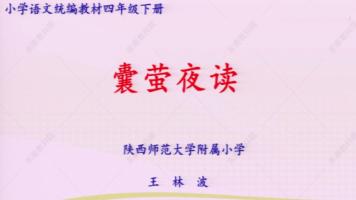 特级教师王林波/四年级下册第22课《囊萤夜读》
