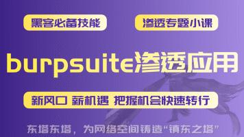 东塔-burpsuite渗透应用 渗透/爆破/支付漏洞/网络安全/黑客技术
