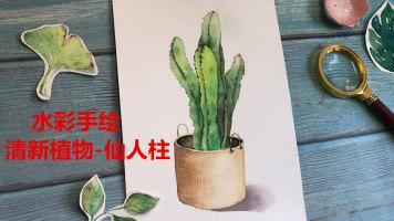 水彩小清新植物-仙人柱