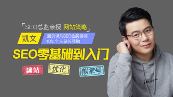 SEO零基础学习|seo培训|seo优化玩儿法揭秘|网络营销推广