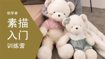 【初学者】素描入门训练营-实训班(毛绒玩偶系列)