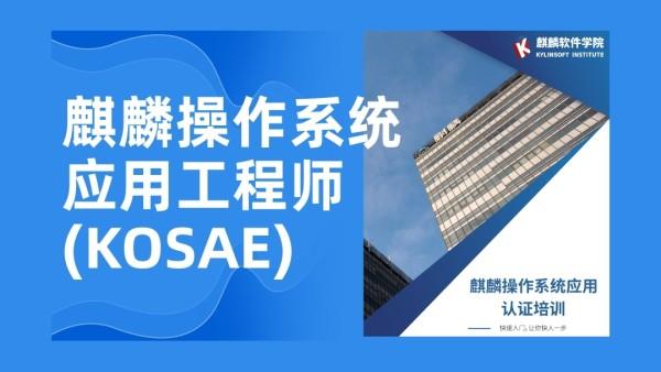 麒麟操作系统应用(KOSAE)
