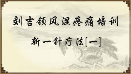 刘吉领风湿疼痛培训——新一针疗法[一]