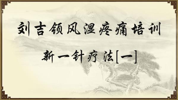 刘吉领风湿疼痛培训——新一针疗法[二]