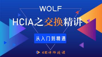5IE讲师,HCIA(HCNA)网工之交换综合讲授HCIA/CCNA/HCIP/HCIE