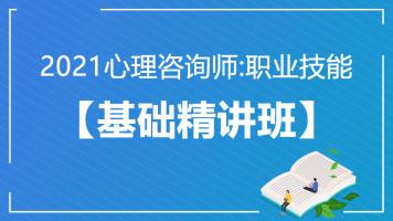 2021心理咨询:职业技能【基础精讲班】