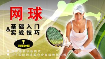 网球零基础入门到实战高手 冠军之路全套系统教程