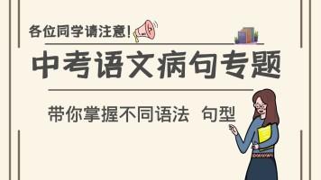 中考语文病句专题突破  初三语文病句精品课