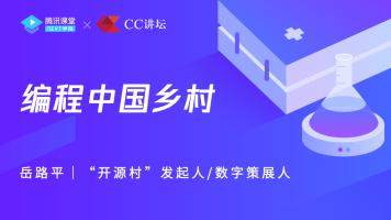岳路平:编程中国乡村