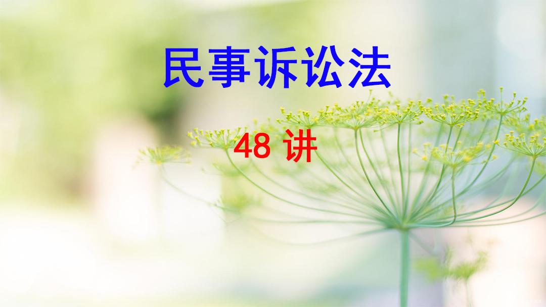西南政法大学 民事诉讼法 唐力 48讲