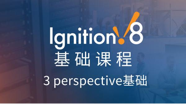Ignition基础课程-perspective基础