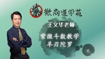 13王文华老师紫微斗数初级篇-羊刃陀罗