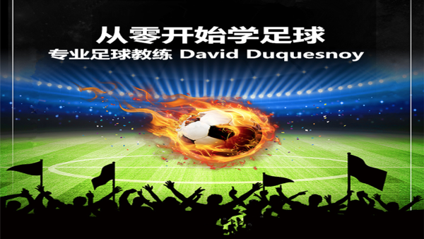 零基础学足球入门与实战技巧全套系统高清金牌教程