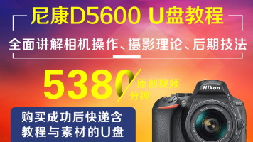 U盘版-尼康D5600摄影从入门到精通