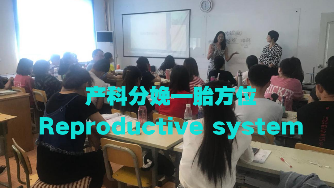 ISPN/RN课程培训国际护士出国-胎方位
