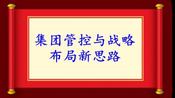 (更新0901)HZ0041+集团管控与战略布局新思路(董事会)