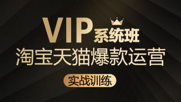 【浮舟教育】0基础淘宝天猫运营系统VIP培训班