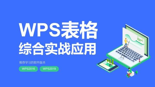 WPS表格视频教程_财务统计电商计划员都适用【朱仕平】