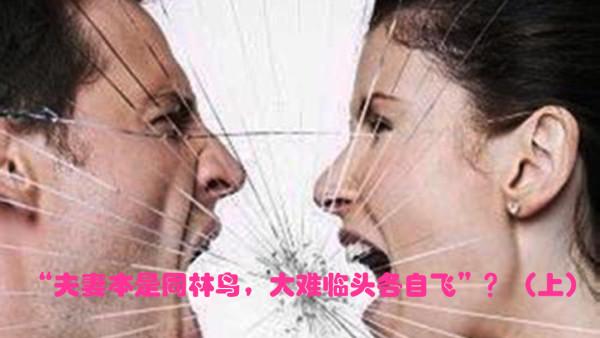 """""""夫妻本是同林鸟,大难临头各自飞""""是对是错?(上集)"""