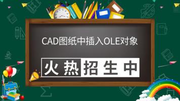 CAD图纸中插入OLE对象精讲