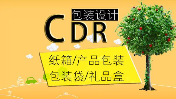CDR精讲包装产品包装/礼品包装/包装袋/纸箱子设计/设计材质/原理