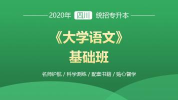 2020四川统招专升本《大学语文》