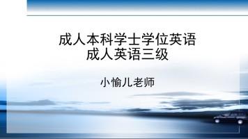 成人学位英语(成人英语三级)语法加真题解析完整课程
