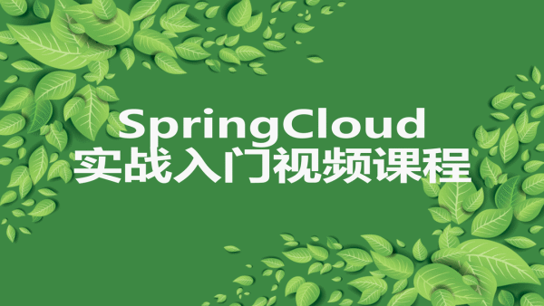 SpringCloud 实战入门视频课程