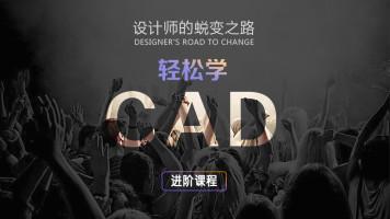CAD进阶-室内设计
