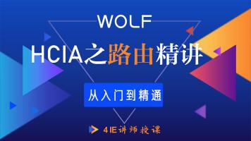 5IE讲师,HCIA(HCNA)网络之路由综合讲授HCIA/CCNA/HCIP/HCIE