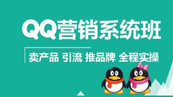 QQ营销赚钱引流推品牌从入门到精通网络营销系列精品课程