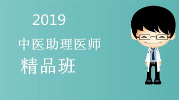 【杏海教育】2019中医助理医师精品班