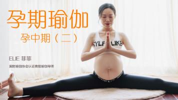 【慢瑜伽】孕期瑜伽系列课程 孕中期(二)中级