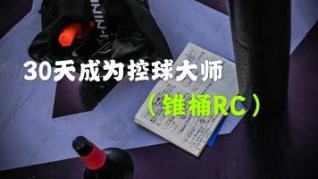 30天成为控球大师(锥桶RC)