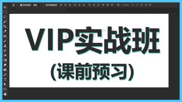 VIP实战预习