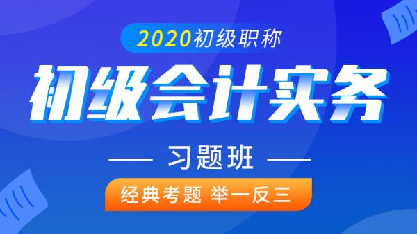 初级会计实务2020年 初级会计职称 初级会计考试习题班课程