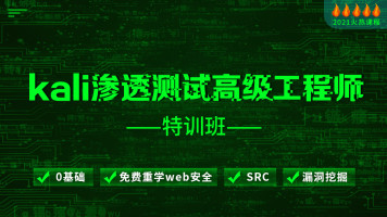 Kali渗透测试高级工程师特训班(web安全/SRC/漏洞挖掘)
