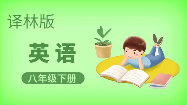 译林版英语八年级下册【一人班时间灵活内容个性化】