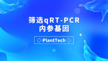 筛选qRT-PCR内参基因