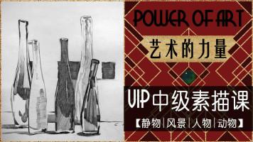 艺术的力量——VIP中级素描课【静物风景人物动物艺术创作课】