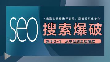 vip】内训 淘宝天猫搜索排名两周爆发上万访客