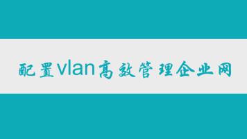 配置vlan高效管理企业网