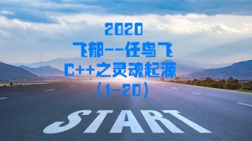 2020飞郁任鸟飞C++之灵魂起源(1-20)