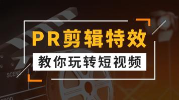 PR剪辑+案例实操/零基础/视频编辑/玩转抖音快手短视频/特效快剪