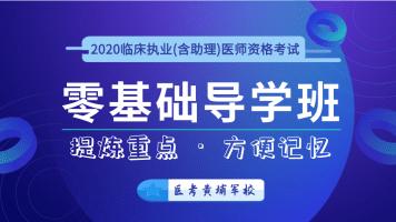 金英杰2020临床执业(含助理)医师【零基础导学班】