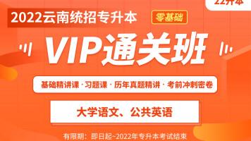 2022云南专升本VIP通关班(大学语文+公共英语)