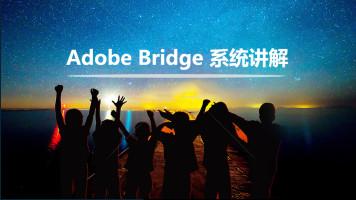 Adobe Bridge入门到精通高级VIP系统课程