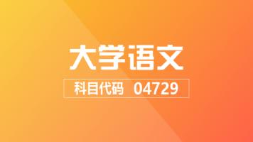 【限时购】自考 大学语文 04729 加速提分班